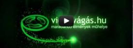 amator_videozas_dvd